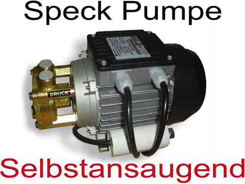 Speck Pumpe Typ  3131-SA-SPYS Selbstansaugend